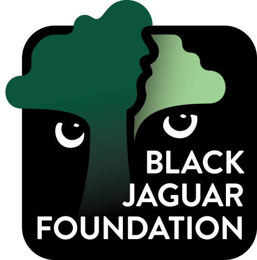 Jan Zandbergen Group - logo Black Jaguar Foundation
